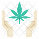 Cannabis Support Icon
