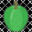 Capcicum Icon