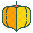 Cape Gooseberry Berry Icon