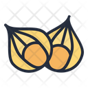 Cape Gooseberry Vegetable Healthy Icon