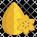 Carambola Star Fruit Icon