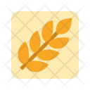 Carbohydrates Icon