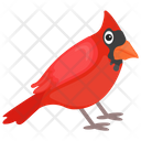 Cardinal Bird Red Bird Feather Creature Icon