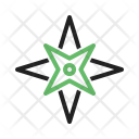 Cardinal Point Star Icon