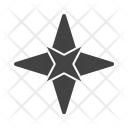 Star Cardinal Point Icon
