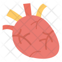 Cardiology Human Heart Icon