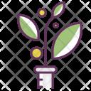 Care Environment Medicine Icon