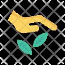 Care plant Icon