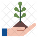 Agriculture Farm Cultivation Icon
