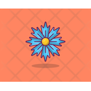 Carnation Spring Flower Agriculture Icon