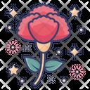 Carnation Dianthus Caryophyllus Clove Pink Icon