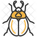 Carrion Beetle Insect Icon