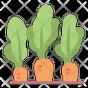Carrot Farming Vegetable Icon