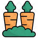 Carrot Vegetables Carrots Icon