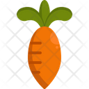 Carrot Diet Food Icon
