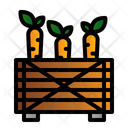 Carrot Box Icon