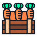Carrot Food Spring Icon