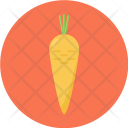 Carrot Farming Root Icon