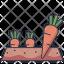 Carrot Plot Organic Carrot Icon