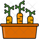 Carrots nursery Icon