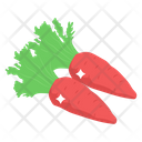Carrots Vegetable Food Icon