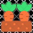 Carrots Spring Season Icon
