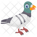 Cartoon Pigeon Humming Pigeon Rock Pigeon Icon