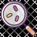 Case Search Report Icon