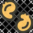 Cashew Nut Food Icon