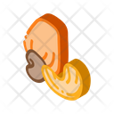 Cashew Nut Icon