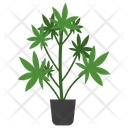 Castor Potted Plant Icon