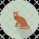 Cat Animal Pose Icon