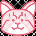 Cat Animal Zoo Icon