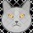 Cat Domestic Animal Pet Icon