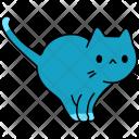 Cat Pet Feline Icon