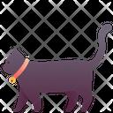 Animal Pet Cat Icon