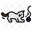 Cat People Person Icon