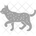 Cat Felidae Claws Cat Icon