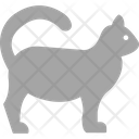 Cat Animal Animals Icon