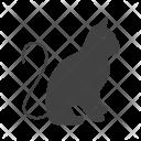 Cat Animal Wildlife Icon