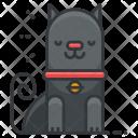 Cat Animal Icon