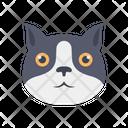 Mammal Face Animals Icon