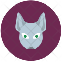 Cat Kitty Hero Icon