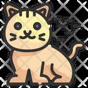 Cat Pet Zoology Icon