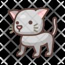 Cat Animal Wild Icon
