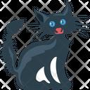 Cat Evil Cat Black Cat Icon