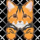 Cat Cat Face Pet Icon