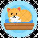 Cat Furniture Cat Bed Cat Resting Icon