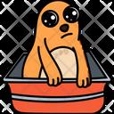 Cat In Tub Icon