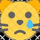 Cat Tear Icon